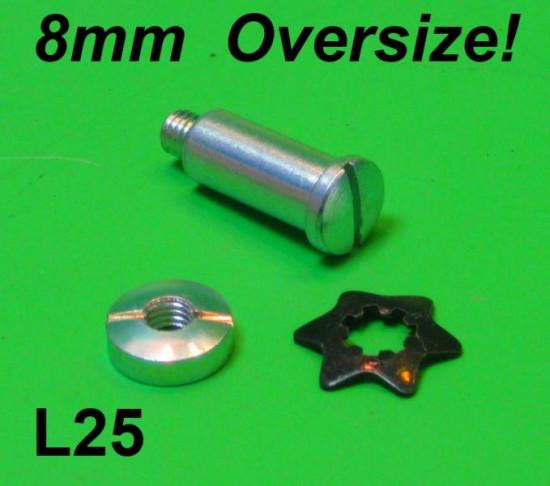 Perno per leva con dado e ranella magg. 1 mm