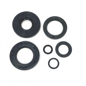Complete engine oilseal + O ring set for Lambretta TV175 S1