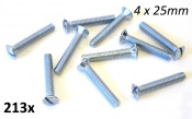 4 x 25mm domed head countersunk screw kit (slotted head / 10pcs.)