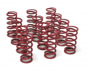 Set of 12 x STRONG springs for PowerMaster clutch (all versions)