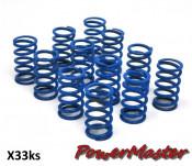 Set of 12 x MEDIUM springs for PowerMaster clutch (all versions)